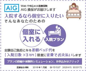 AIG損保の個室に入れる入院プラン1